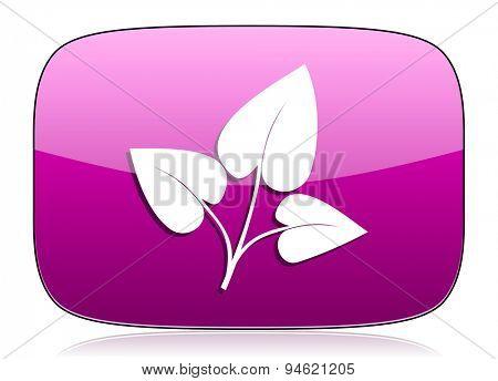 leaf violet icon nature sign