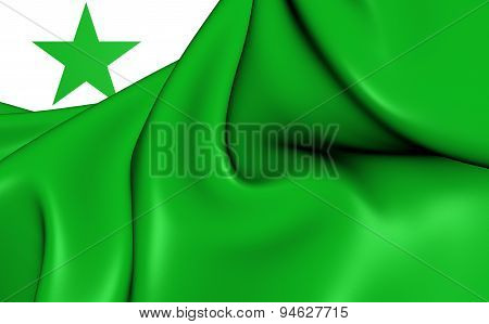 Flag Of The Esperanto. Close Up.