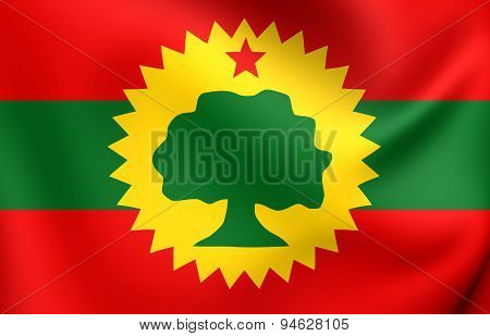 Flag Of Oromo Liberation Front