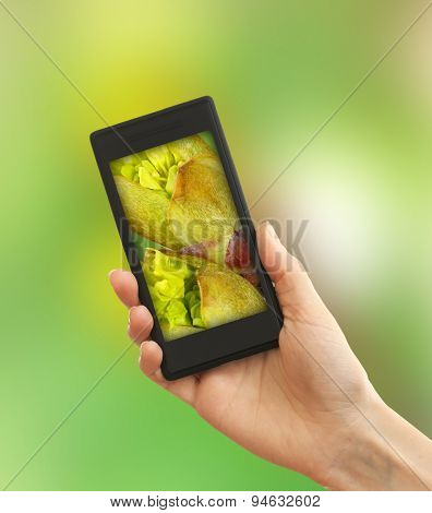 Using mobile phone to take photos of blossoming buds on tree