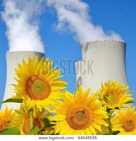 Nuclear power plant Temelin with sunflowers