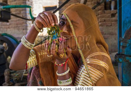 GODWAR REGION, INDIA - 14 FEBRUARY 2015: Young Indian woman wears saree and traditional arm bracelets decorated in jewelry has fun with food.