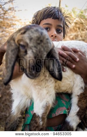 GODWAR REGION, INDIA - 13 FEBRUARY 2015: little Rabari girl in stable with small lamb. Rabari or Rewari are an Indian community in the state of Gujarat.