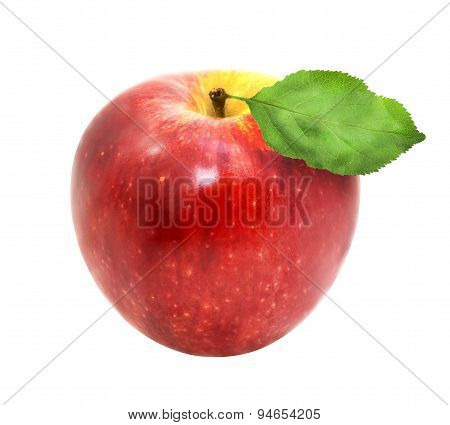 Delicious Fresh Red Apple