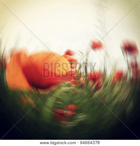 Blurred Poppy Flower Field Background Template