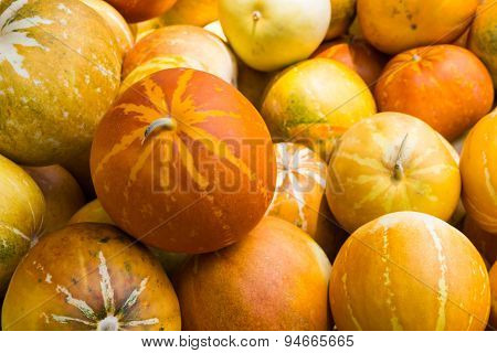 Cantaloupe Fruit