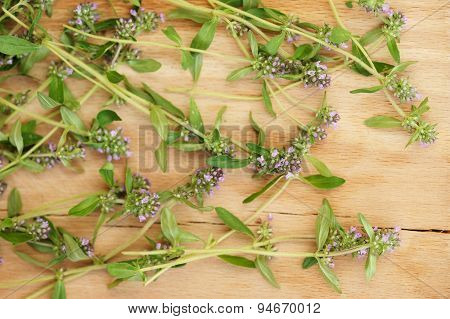 Wild Thyme On Light Wooden Board