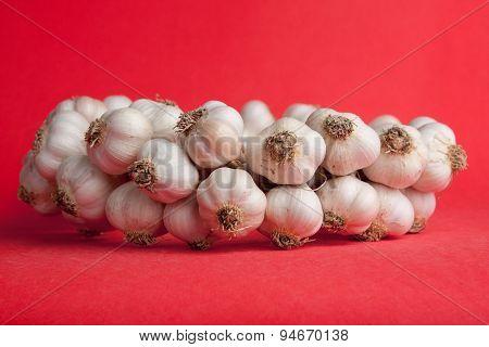 Garlic Bunch On A Red Background