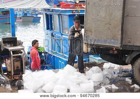 Nha Trang, Vietnam - February 21, 2013: Workers Are Grinding Ice To Preserve Tuna Fish In The Hon Ro