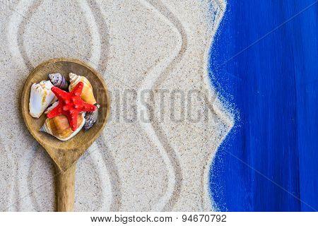 Shells Colored Spoon Beach Sand