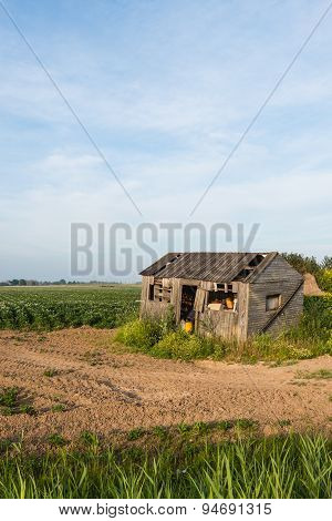 Old Dilapidated Small Wooden Barn Beside A Potato Field