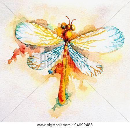 Orange Watercolor Dragonfly
