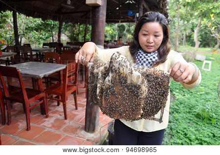 Ben Tre, Vietnam - January 1, 2014: A Woman Is Showing Her Beekeepers Tray From Her Farm In Ben Tre