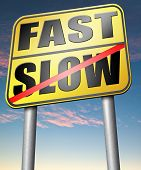 pic of rats  - fast or slow pace - JPG