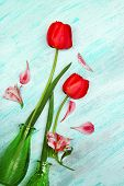 picture of jonquils  - Beautiful red tulips in vases on wooden background - JPG