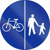 pic of pedestrians  - Polish traffic sign on a shared - JPG