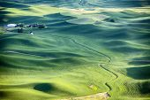 picture of farm-house  - A streambed flows around the wheat fields and hills of the farmland in the Palouse area of Eastern Washington and leads to a farm house in the upper left - JPG