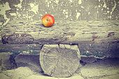 image of pass-time  - Ripe apple on old wooden bench retro toned time passing and aging concept - JPG