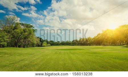 Public park. Park in the capital. Park Lawn Green. Green trees in park. Sky and clouds at the park. Green field in a park in Bangkok Thailand. The park is a place to relax and exercise.