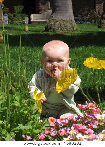 Baby & Flowers