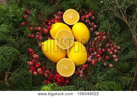 Lemon in winter is a great way to get vitamins for health. Lots of sliced lemon set with branch of fir and rowan berry.