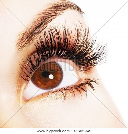 Woman brown eye with extremely long eyelashes
