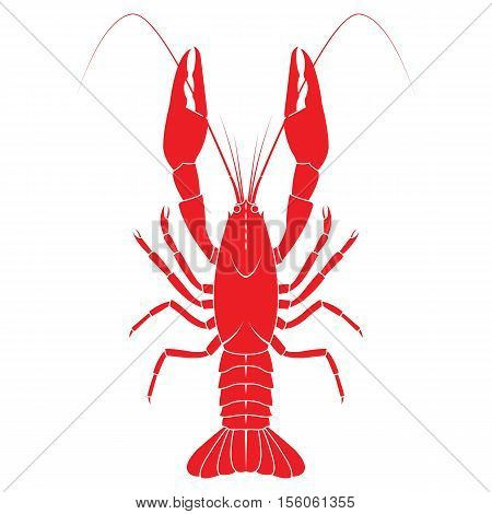 Red crayfish vector flat illustration isolated on white background. Fresh seafood icon. vector on isolated