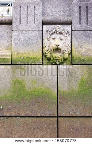 Lion's Head On Wall