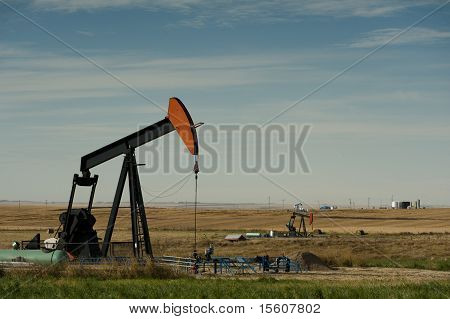 Field Of Oil Pumps
