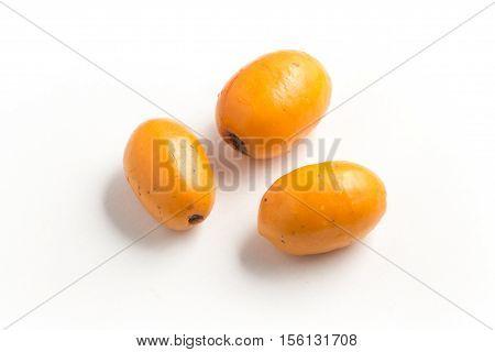 Brazilian Fruit Jocote (Red Mombin Purple Mombin Hog Plum Sineguela Siriguela ciriguela)