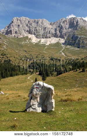 The high Plateau of Montasio with green pastures in summer and Julian Alps (Jof di Montasio). Udine Friuli Venezia Giulia Italy Europe