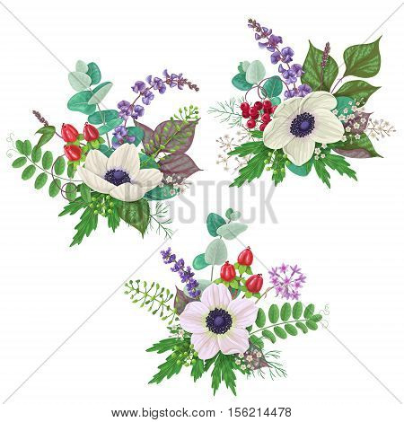 Bunches of flowers isolated on white. Romantic bouquets with cream color anemone floral elements and berries.