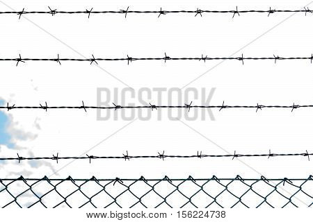 Barbed wire in backlight arranged in parallel lines.