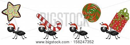 Scalable vectorial image representing a ants on the march to deliver Christmas candy gifts, isolated on white.