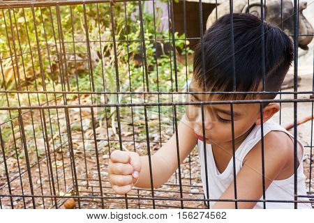 Little Asian boy in the cage kidnap or imprison concept