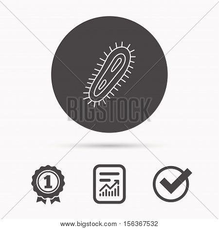Bacteria icon. Medicine infection symbol. Bacterium or microbe sign. Report document, winner award and tick. Round circle button with icon. Vector