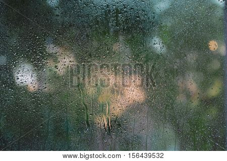 Condensation on the glass trees in the background