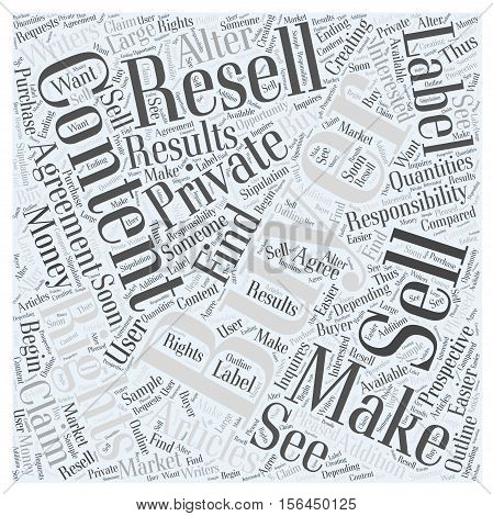 Writers Make Money by Creating and Selling Private Label Articles word cloud concept