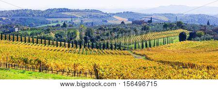 Traditional scenery of Tuscany .beautiful Chianti - vine region , Italy