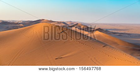 Golden sunlight over ridges and shapes of sand dunes in the majestic Namib Naukluft National Park at Walvisbaai scenic tourist and travel attraction in Namibia. Adventure and exploration in Africa.