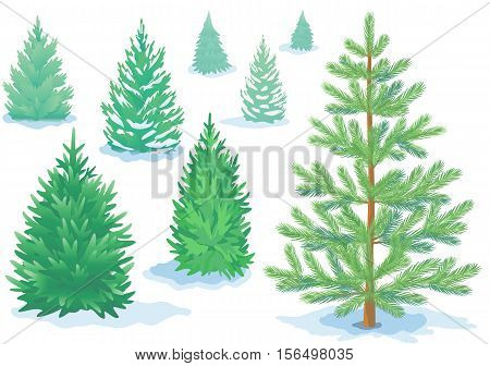 A set of pine trees fir trees with varying degrees of detail. Stock vector.