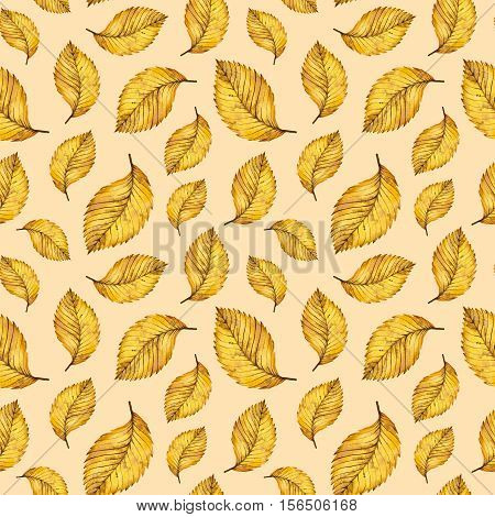 Autumn watercolor seamless pattern of yellow leaves, hand painted watercolour autumn background of falling leaf elm, design for fabric, textile, wrapping paper, card, invitation, wallpaper, web design