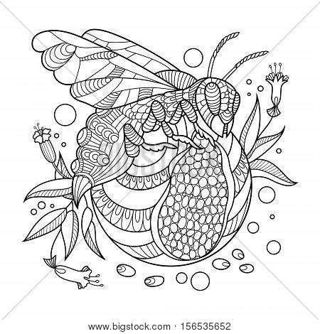 Wasp coloring book for adults vector illustration. Anti-stress coloring for adult. Tattoo stencil. Zentangle style. Black and white lines. Lace pattern