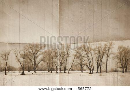 Winter Bg
