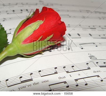 Love Song II