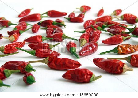 Red hot chili peppers in isolated background