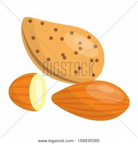 Heap of various kinds of nuts. Pile of nuts almond, nut isolated on white. Pile of nuts organic healthy seed ingredient and pile of nuts heap almond nature nuts.