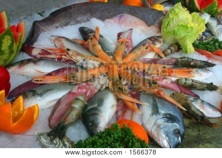 Sea Food Decoration On The Ice