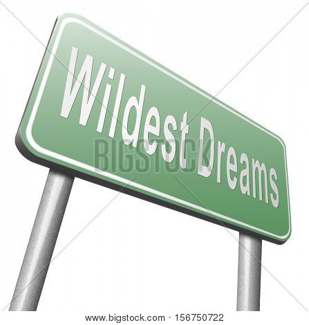 Wildest dreams make dreams come true realize your ambition 3D illustration, isolated, on white