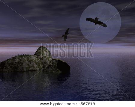Two Ravens In The Night - Digital Illustration